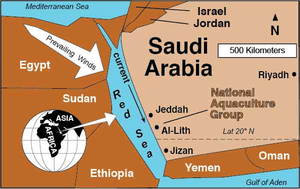 Saudi Arabia Name Change NPC to NAQUA on serbia farms, japan farms, uganda farms, swaziland farms, iran farms, ussr farms, liechtenstein farms, barbados farms, turkmenistan farms, sa farms, cyprus farms, belarus farms, asia farms, moldova farms, doha qatar farms, libya farms, falkland island farms, venezuela farms, pakistan farms, hawai farms,